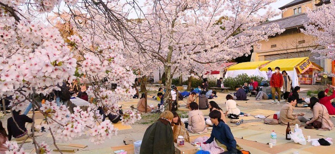 3 lễ hội đặc sắc ở Nhật Bản