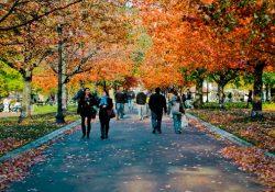 Khám phá những công viên xinh đẹp ở Boston