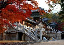 4 trải nghiệm ở Gyeongju – thủ đô cổ của Hàn Quốc