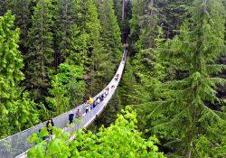 Những điểm du lịch nổi tiếng nhất tại thành phố Vancouver