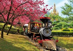 Du lịch Tết Đài Loan để chiêm ngưỡng sắc hoa anh đào