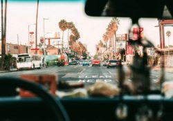 Bỏ túi những mẹo du lịch thông minh khi đến Los Angeles