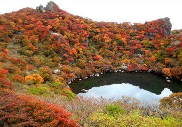 Những địa điểm ngắm mùa thu ở Đài Loan đẹp nhất