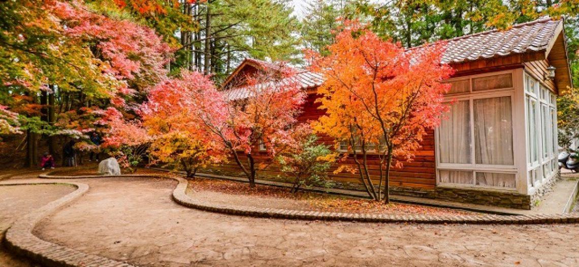 Mách bạn địa điểm ngắm mùa thu đẹp nhất ở Đài Loan