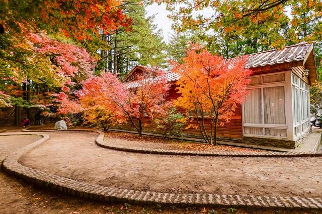 Nông trại có khu nhà nghỉ với thiết kế mộc mạc, thích hợp để nghỉ dưỡng